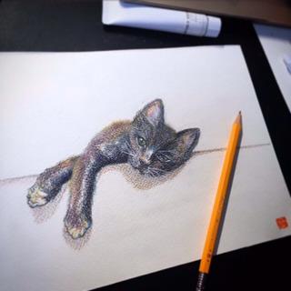 ペットのイラストやお店のポップお描きします