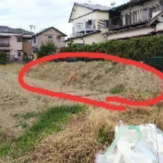 畑と山の土(混ざってしまっていて石も大小けっこう入っています)