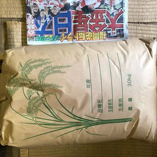 値下げ!令和元年9月に稲刈りしたお米です。