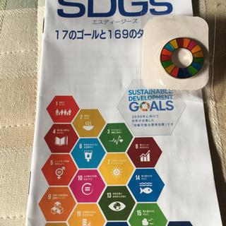 国連SDGs ピンバッチ 17のゴールと169のターゲット
