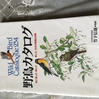 野鳥カタログ ブックカバー済み 中古美品