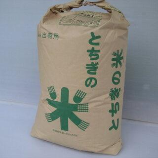 新米 コシヒカリ 栃木の星 生産直売