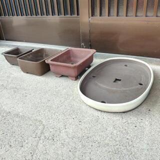 植木鉢いろいろ