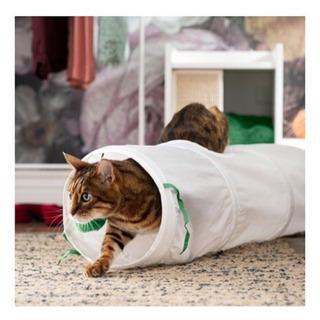 猫用トンネル