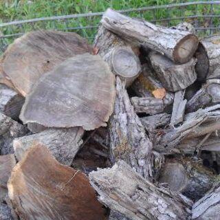 薪 キャンプファイヤー等に メッシュパレット山盛り1杯分