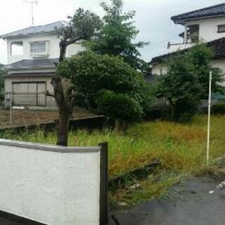 草刈/剪定/伐採 作業いたします(^^)