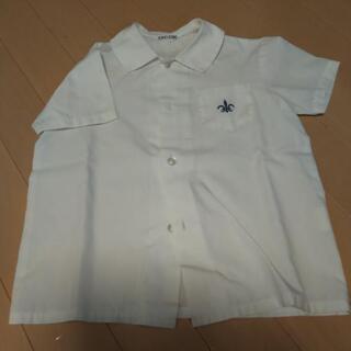 めぐみ幼稚園 半袖シャツ