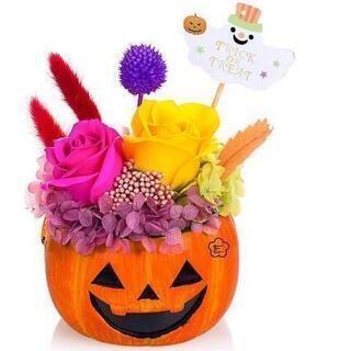 プリザーブドフラワー 鉢花 ハロウィン かぼちゃ パンプキン ジ...