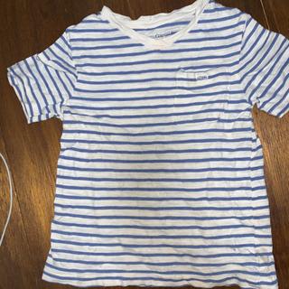 babyGap ボーダー Tシャツ