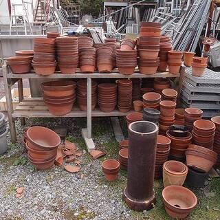 福島県発 中島村発 植木鉢 大量まとめて 最低50鉢から 引き取り限定