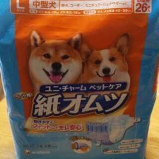 【11月処分予定】犬用紙オムツLサイズ26枚入り