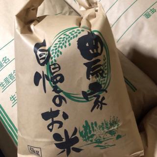 令和元年 コシヒカリ 新米 10kg