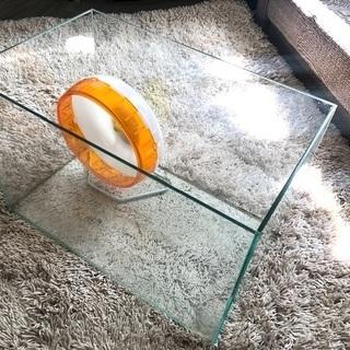 ゴールデンハムスター用 ガラス水槽ケージセット