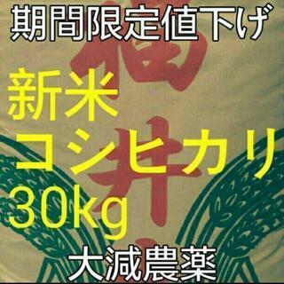 新米コシヒカリ30kg