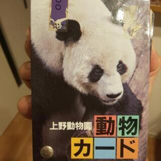 上野動物園 動物カード