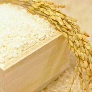 新米30キロ和歌山のお米です。