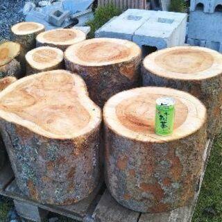 期間限定!ケヤキの丸太。丸太椅子、木工などに。茨城県潮来市。