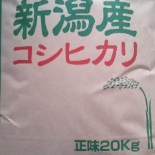 【あと30袋有】長岡産新米コシヒカリ玄米20kg中米【精米無料】