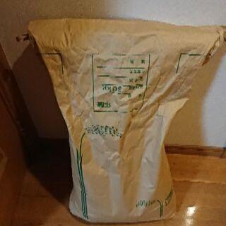 【商談中】29年度水主米