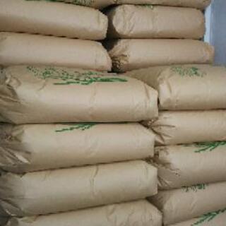 三重県産  みえのえみ  米  玄米  30キロ