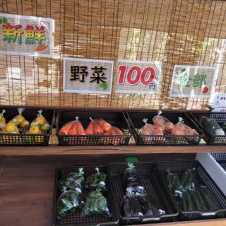 ゆうしん野菜販売100円市場🍀(* ॑ω ॑*  )(∩´ ̫`∩)