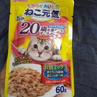 猫のウエットフード未開封(おまとめ価格)