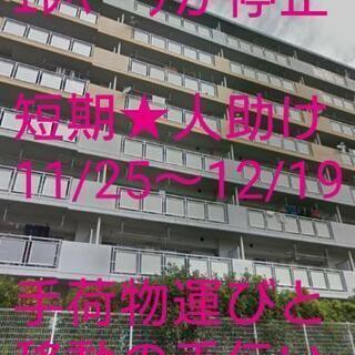 八田 11/26~12/19 手荷物運び等の人助け