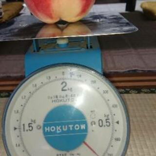 超大玉!桃1kg300円より《特別栽培》福島市