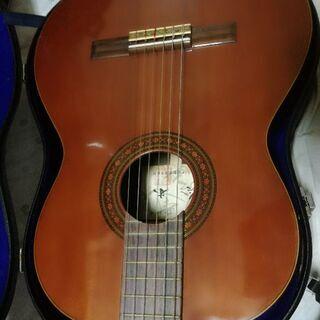 第38号 アコースティックギター 鈴木バイオリン製造株式会社