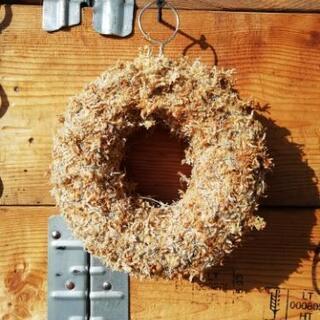 【手作り 多肉植物リース】ハロウィンやクリスマス用にいかが…