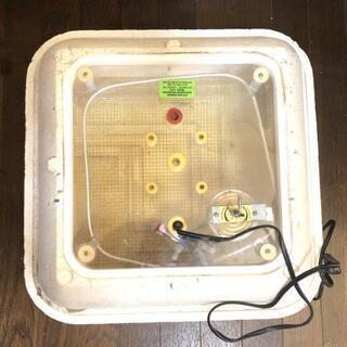 爬虫類用、孵卵器のホバベイター