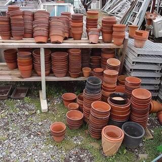 福島県発 中島村発 植木鉢 まとめて大量 最低でも50鉢から 引...