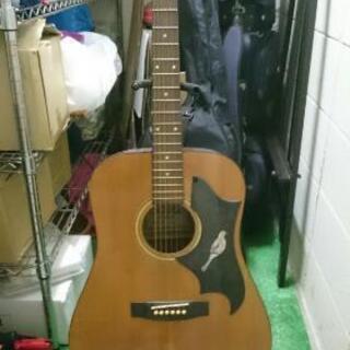 ♪アコースティックギター ヴィンテージ