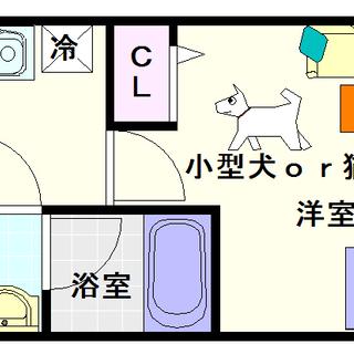 【スプランディッド難波】2号タイプ!1Kタイプ!猫飼いたいの?飼...