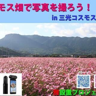 [今年も開催!]コスモス畑で写真を撮ろう! in 三光コスモス祭り