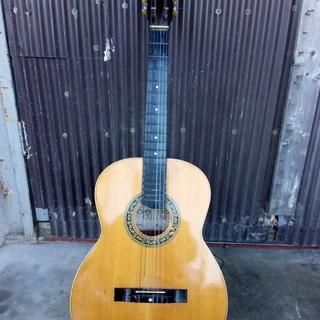 crescendo  クレシェンド ギター