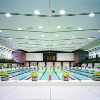 水泳レッスン『マンツーマン指導』
