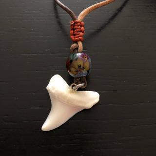 サメの歯ネックレス