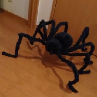 巨大 リアル 蜘蛛 ぬいぐるみ 針金入り ハロウィン オブジェ