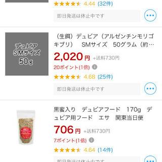 デュビア1g30円