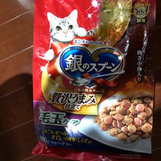 猫用カリカリご飯受け渡し終了 - 玖珠郡