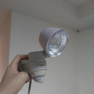 ライテックス LED センサーライト 玄関 倉庫入口等に (近隣...