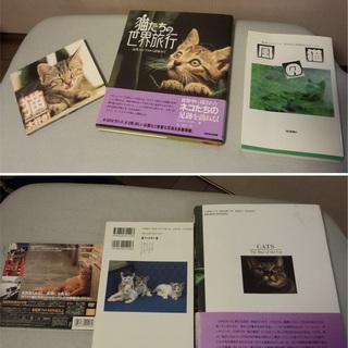 猫たちの世界旅行(ハードカバー本)、「猫 大好き」DVD、にゃん...