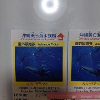 明日まで。お得❣沖縄美ら海水族館 チケット