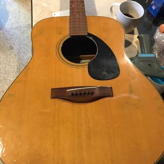 ギター、アコースティックギター、スズキギター