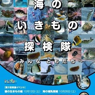 【東京駅・恵比寿駅発着/バス】海のいきもの探検隊~みんなともだち...