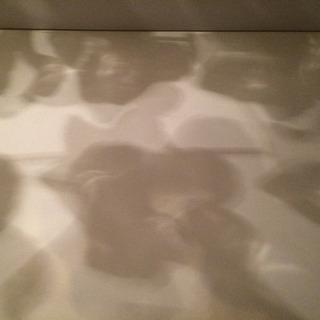 キシマブーケシーリングライト