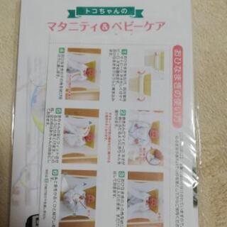 トコちゃんベルト青葉 おひなまきMS(2枚組)