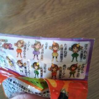 AKB48マスコットストラップ2個◇KAGOMEおまけ - 長岡市