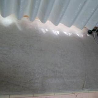 80×167(cm)サイズのカーペット